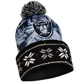 NFL Big Logo Light Up Printed Beanie Knit Cap (Oakland Raiders)