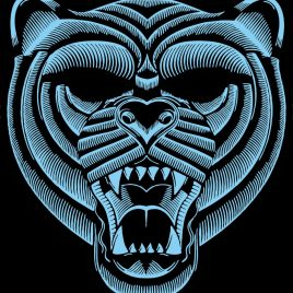 3d tiger led mask